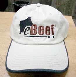 e-beef