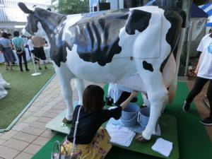 模型の牛での搾乳体験